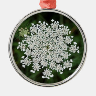 queen anne's lace Silver-Colored round decoration
