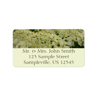 Queen Anne's Lace White Wildflower Address Label