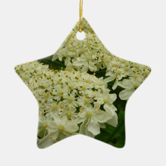 Queen Anne's Lace White Wildflower Ceramic Star Decoration