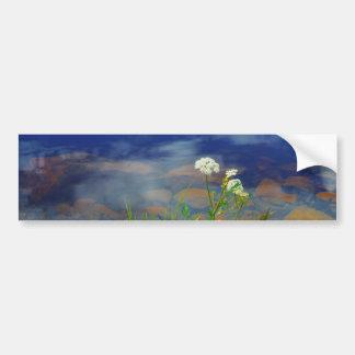 Queen Ann's lace flowers, blue mountain lake Bumper Sticker