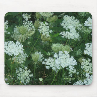 'Queen Ann's Lace' Mouse Pad