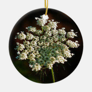 Queen Ann's Lace Round Ceramic Decoration