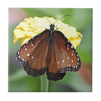 Queen Butterfly Small Square Tile