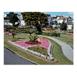 Queen Mary Gardens, Falmouth  flowers Postcard