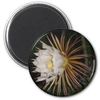 Queen Of The Night Cactus Flower 6 Cm Round Magnet