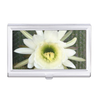 Queen Of The Night Cactus Flower, Karoo Region Business Card Holder