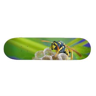 Queen Paper Wasp Tending to Her Nest Skateboard Decks