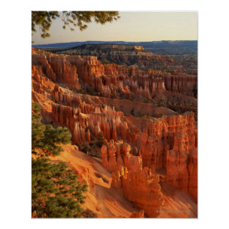 'Queen's Garden' hoodoos at sunrise. Bryce Poster