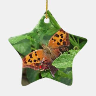 Question Mark Butterfly on Lantana Ceramic Star Decoration