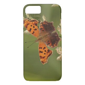 Question Mark butterfly, Polygonia iPhone 8/7 Case