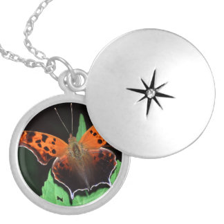 question mark butterfly round locket necklace