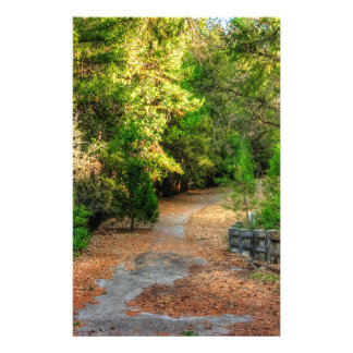 Quiet pathway winds through a forest stationery