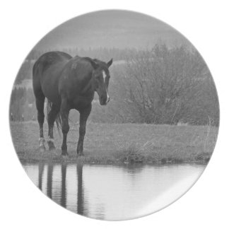 Quiet Reflectionz ~ Collectable Plate