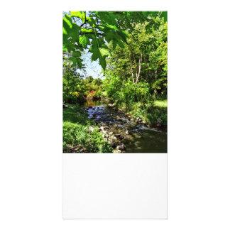 Quiet Stream Picture Card