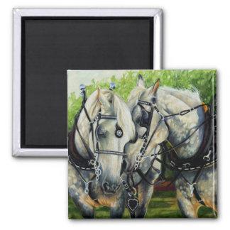 Quiet Strength - Percheron Horse Team Square Magnet