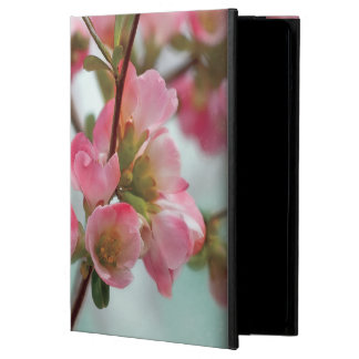 Quince Blossoms Case For iPad Air