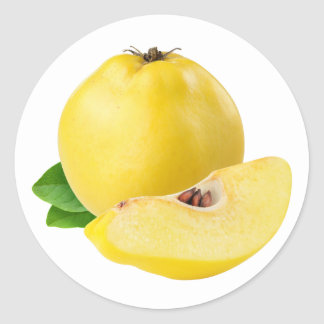 Quince fruits classic round sticker