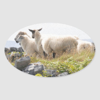Quirky Designs - Sheep in a field Oval Sticker