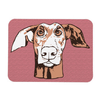 Quirky doberman rectangular photo magnet