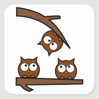Quirky Owls Out On A Limb Square Sticker