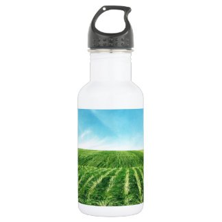 Quite land 532 ml water bottle