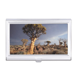 Quiver Trees (Aloe Dichotoma) Business Card Holder