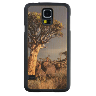 Quiver Trees (Aloe Dichotoma) Carved Maple Galaxy S5 Case