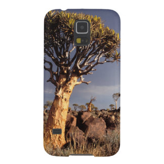 Quiver Trees (Aloe Dichotoma) Case For Galaxy S5