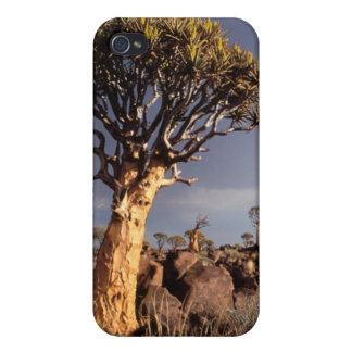 Quiver Trees (Aloe Dichotoma) iPhone 4 Case