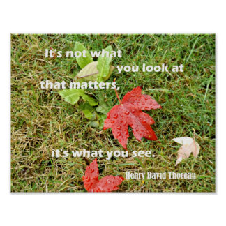 """Quote by Thoreau """"It's not what you look at that Poster"""