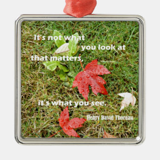 Quote byThoreau: It's not what you look at that Christmas Ornament