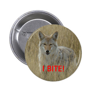 R0002 Coyote Pinback Buttons