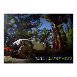 R/C Wilderness Off Road Poster