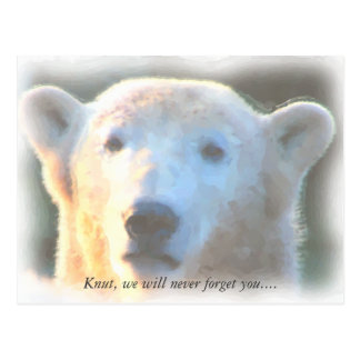 R.I.P. polar bear Knut watercolor Postcard