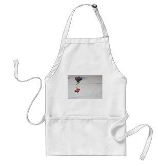 r.jpg standard apron