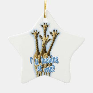 r ulooking at me giraffes ceramic star decoration