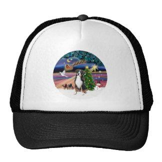R-Xmas Magic-Greater Swiss Mt Dog Hats