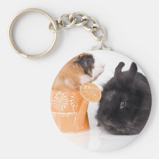 rabbit and guinea pig basic round button key ring