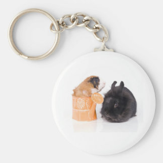 rabbit and guinea pig keychains