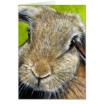 Rabbit Art Card