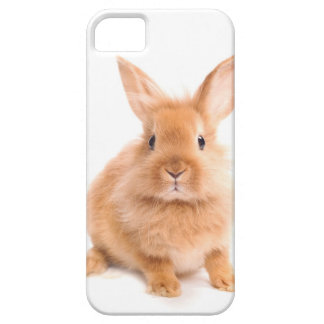 Rabbit Barely There iPhone 5 Case