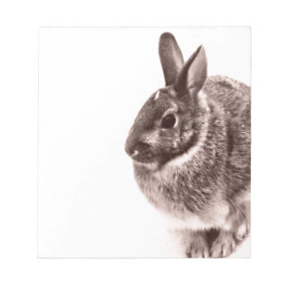 Rabbit  Black and white Notepad