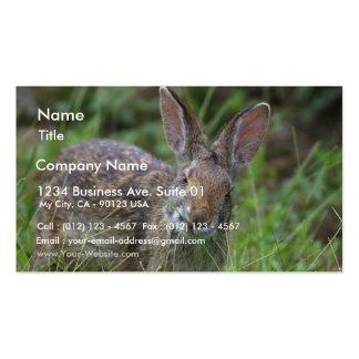 Rabbit Business Card Templates