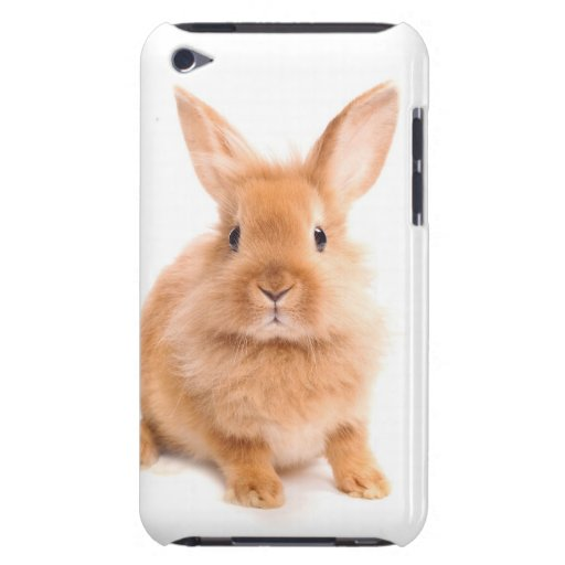 Rabbit iPod Touch Case