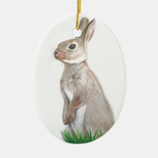 Rabbit Ceramic Oval Decoration