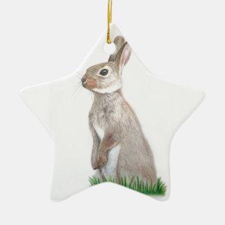Rabbit Ceramic Star Decoration