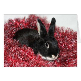 Rabbit Christmas Greeting Card