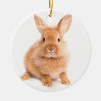 Rabbit Christmas Ornament