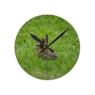 Rabbit Round Wallclocks