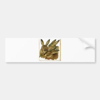 Rabbit Design Bumper Sticker